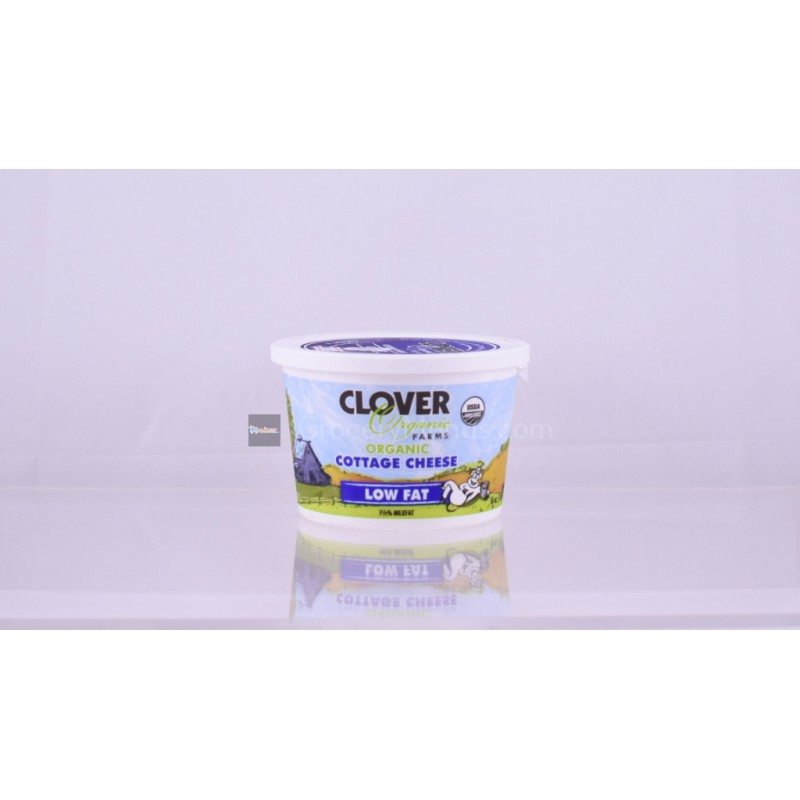 Clover Organic Cottage Cheese